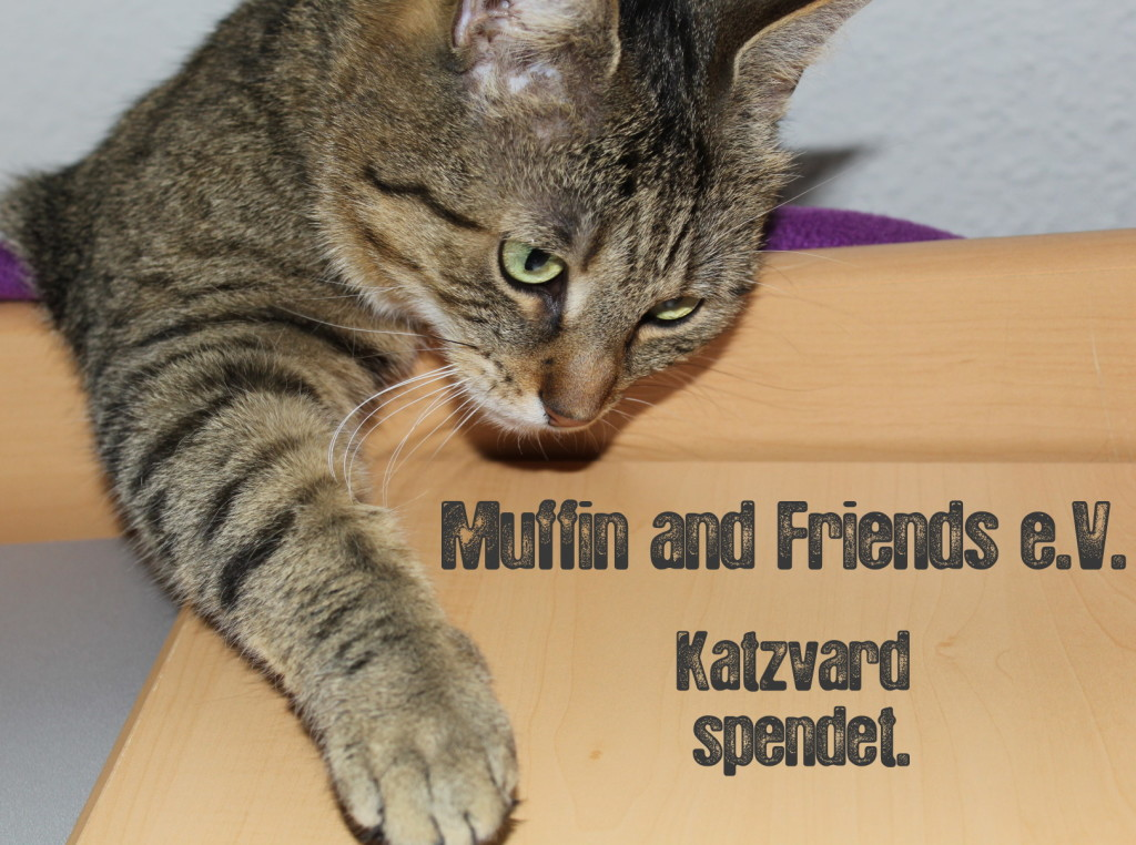 Muffin_and_Friends